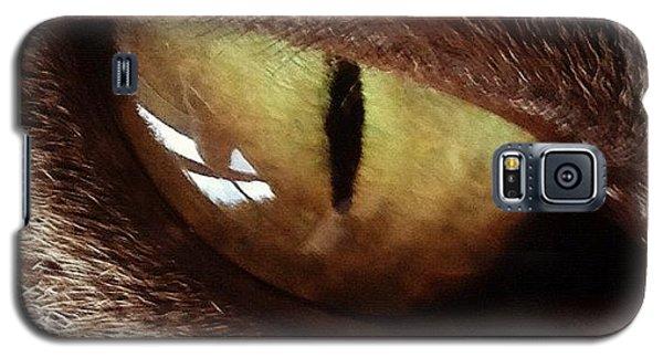 Gmy Galaxy S5 Case - Cat Eye by Cameron Bentley
