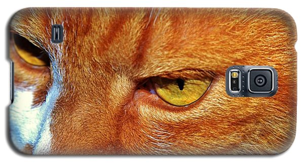 Cat Eyes Galaxy S5 Case