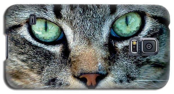 Cat Face Galaxy S5 Case