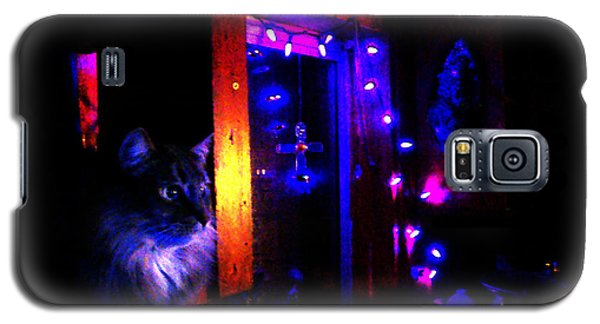 Galaxy S5 Case featuring the photograph Cat In The Night Kitchen by Susanne Still