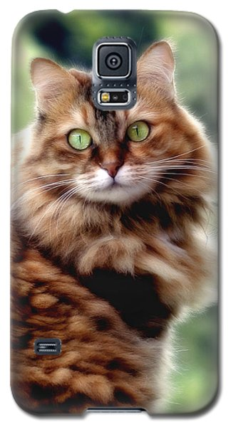 Cat Portrait Galaxy S5 Case