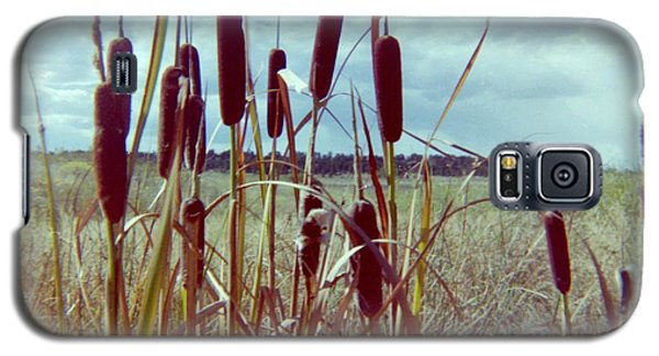 Galaxy S5 Case featuring the photograph Cat Tails by Bonfire Photography