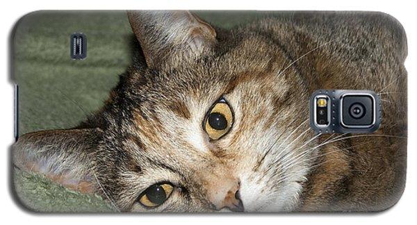 Cats Eyes Galaxy S5 Case