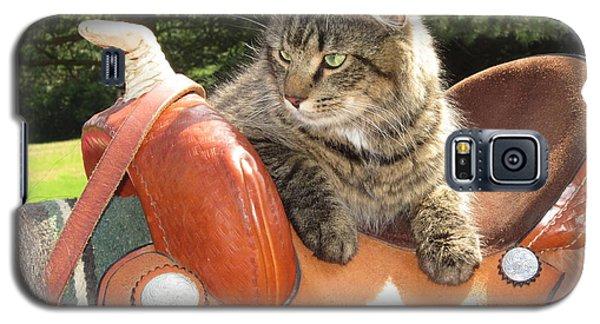 Cats Ride Free Galaxy S5 Case