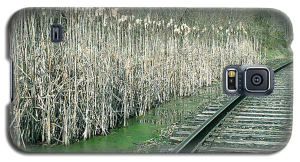 Cattails By The Tracks Galaxy S5 Case by Sandy McIntire