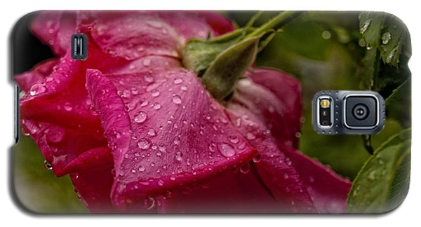 Caught In The Rain Galaxy S5 Case by Barbara Middleton