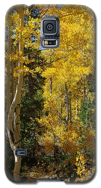 Galaxy S5 Case featuring the photograph Changing Seasons by Vicki Pelham