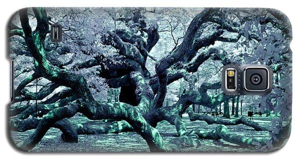Charleston's Angel Oak Galaxy S5 Case