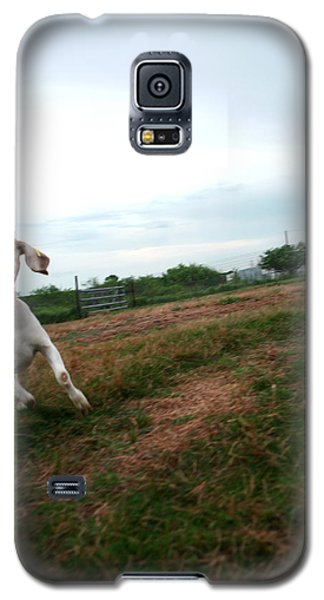 Galaxy S5 Case featuring the photograph Chased By A Crazy Goat by Lon Casler Bixby