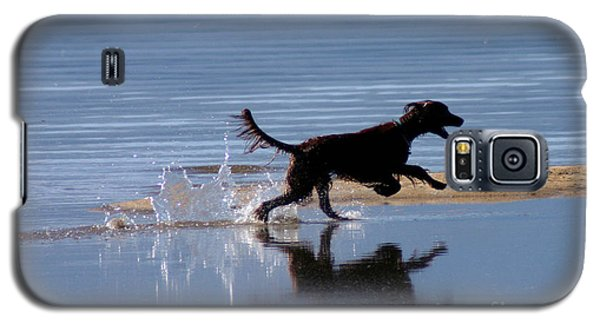 Galaxy S5 Case featuring the photograph Chasing Reflections by Mitch Shindelbower