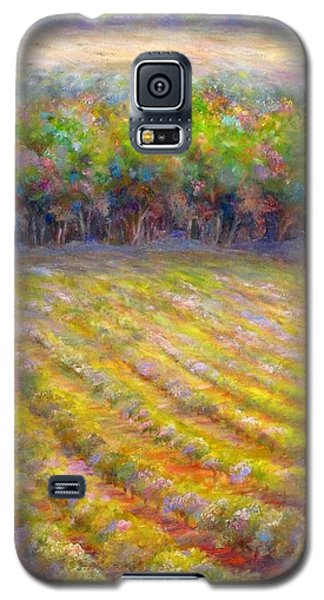 Chateau De Berne Vineyard Galaxy S5 Case by Bonnie Goedecke