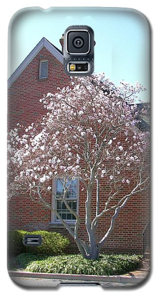 Galaxy S5 Case featuring the photograph Cherry Blossom by Pamela Hyde Wilson