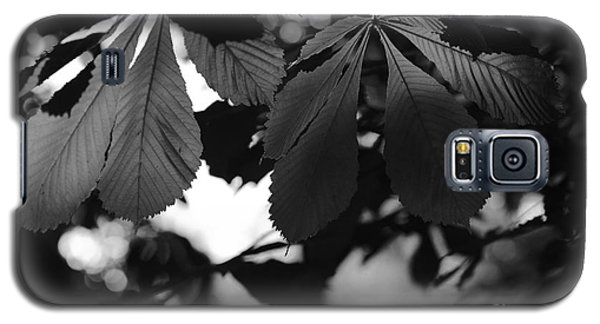Chestnut Leaves Galaxy S5 Case