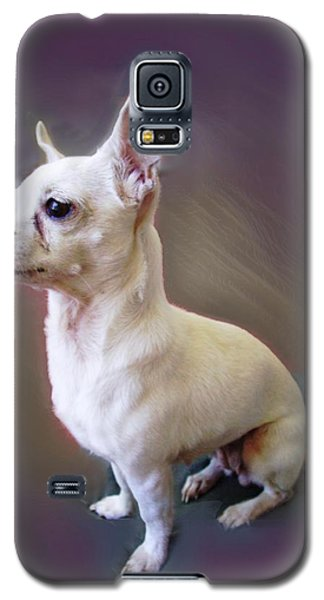 Galaxy S5 Case featuring the photograph Chichi by Ginny Schmidt