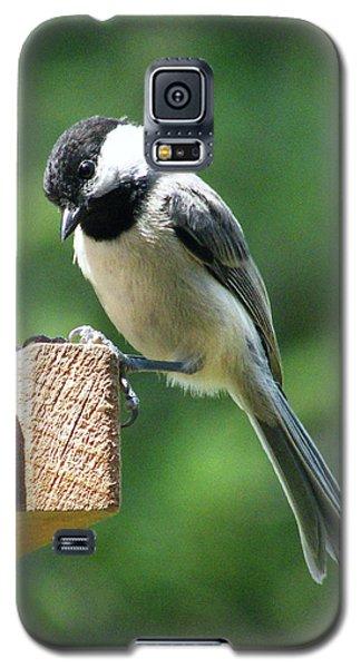 Galaxy S5 Case featuring the photograph Chickadee by Lizi Beard-Ward