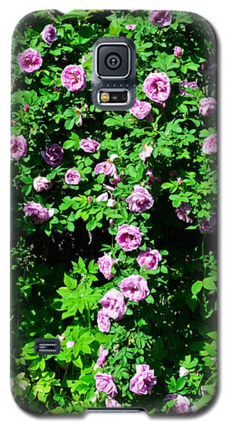 China Rose Galaxy S5 Case