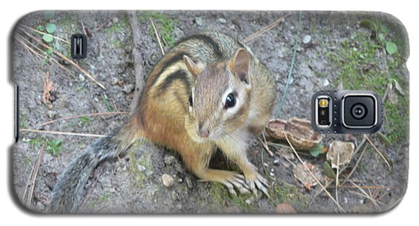 Galaxy S5 Case featuring the photograph Chipmunk Feast by Laurel Best