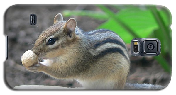 Galaxy S5 Case featuring the photograph Chipmunk by Laurel Best