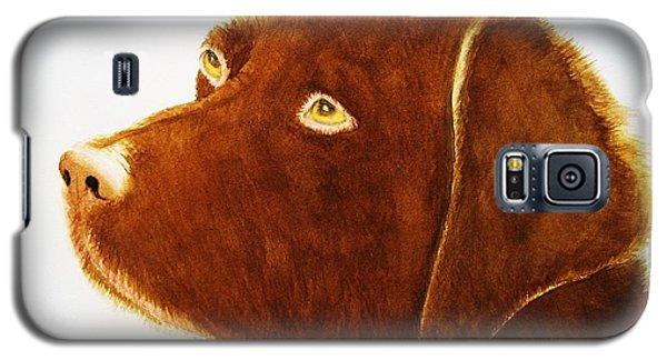 Chocolate Labrador  Galaxy S5 Case