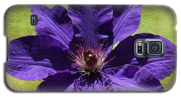 Clematis On Stone Galaxy S5 Case