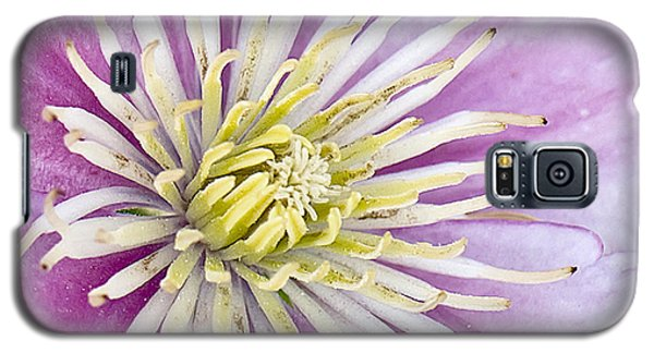 Clematis Up Close Galaxy S5 Case