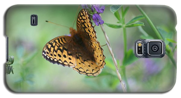 Close-up Butterfly Galaxy S5 Case