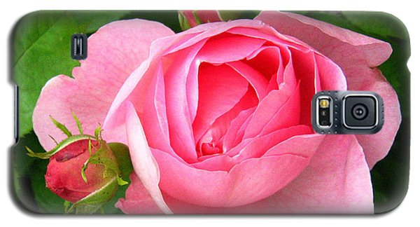 Rose And Rose Buds Galaxy S5 Case