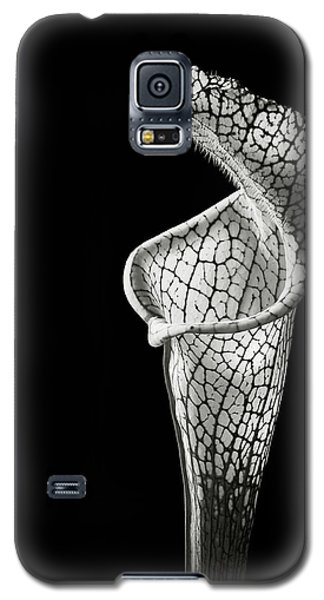 Cobra Lily In Black And White Galaxy S5 Case