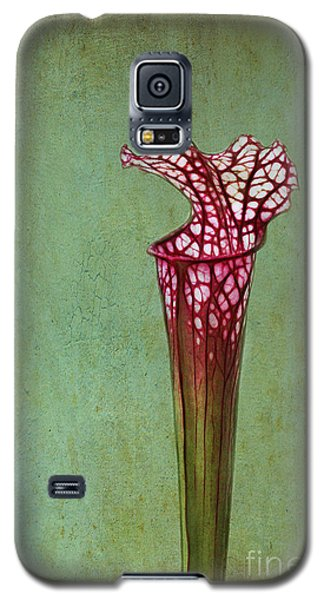 Cobra Lily Galaxy S5 Case