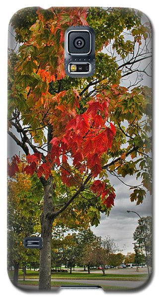 Galaxy S5 Case featuring the photograph Cold Autumn Breeze  by Michael Frank Jr