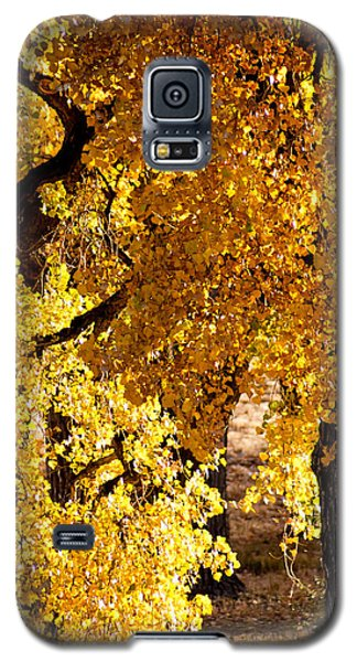 Colorado Gold Galaxy S5 Case
