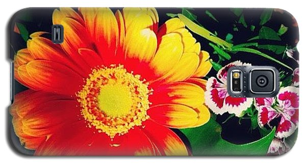 Orange Galaxy S5 Case - Colorful Flowers by Matthias Hauser