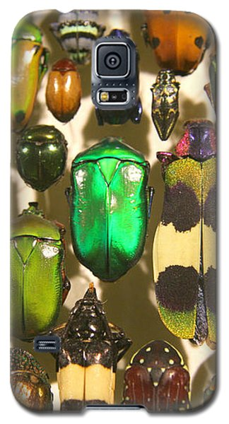 Galaxy S5 Case featuring the photograph Colorful Insects by Brooke T Ryan