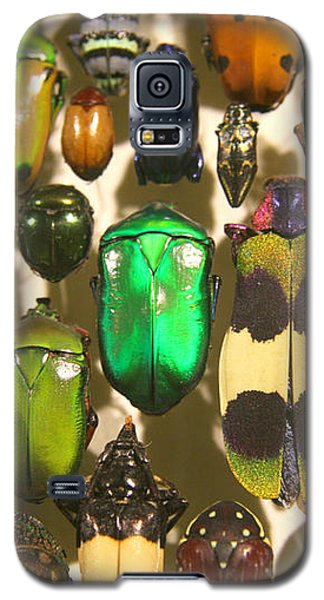 Colorful Insects Galaxy S5 Case
