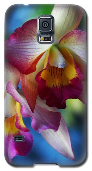 Colorful Orchids Galaxy S5 Case