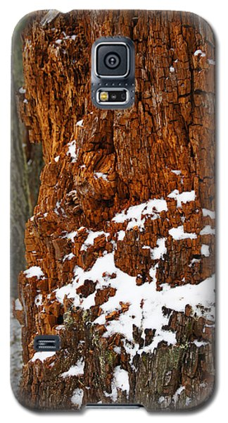Galaxy S5 Case featuring the photograph Colorful Remains by Mick Anderson