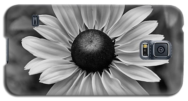 Galaxy S5 Case featuring the photograph Colorless by Brian Hughes