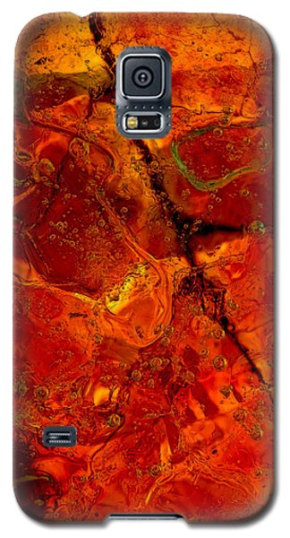 Colors Of Nature 3 Galaxy S5 Case