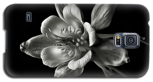 Galaxy S5 Case featuring the photograph Columbine In Black And White by Endre Balogh