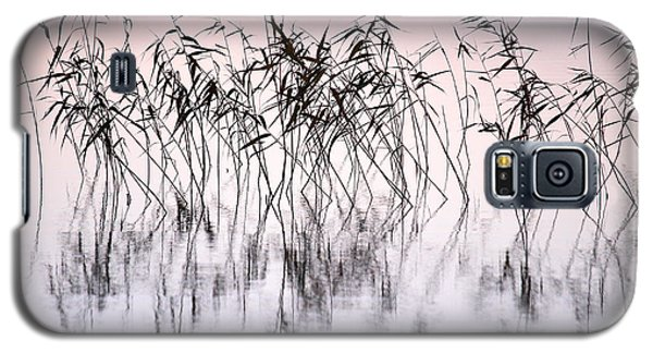 Common Reeds Galaxy S5 Case