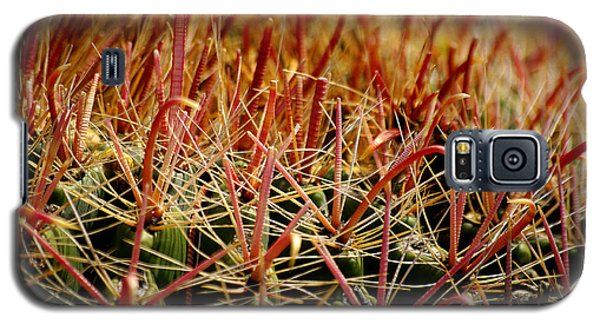 Complexity Of Nature Galaxy S5 Case by Vicki Pelham