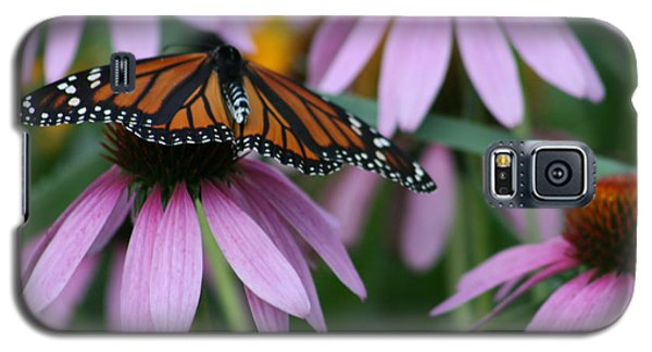Galaxy S5 Case featuring the photograph Cone Flowers And Monarch Butterfly by Kay Novy