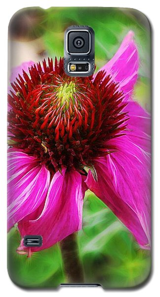 Galaxy S5 Case featuring the photograph Coneflower by Judi Bagwell