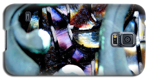 Galaxy S5 Case featuring the photograph Contrasting Detail by Lisa Brandel