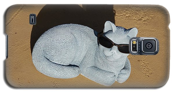 Galaxy S5 Case featuring the photograph Cool Cat by Aimee L Maher Photography and Art Visit ALMGallerydotcom