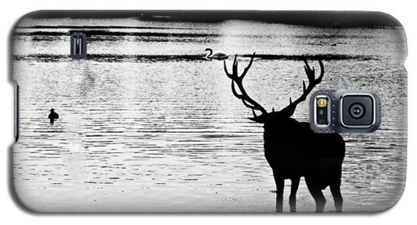 Galaxy S5 Case featuring the photograph Cooling Off Deer by Maj Seda