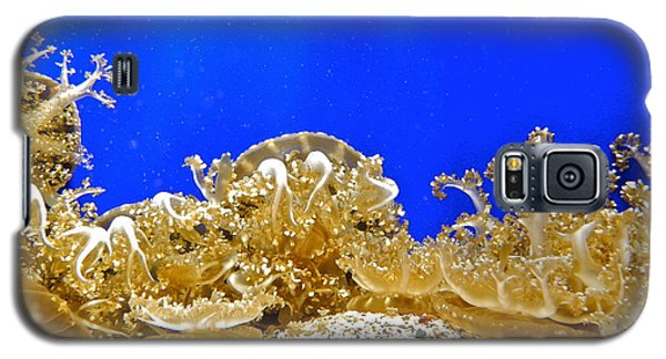 Coral Like Golden Crowns Galaxy S5 Case by Kirsten Giving