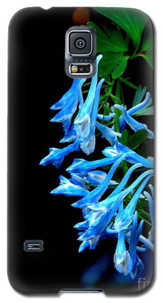Galaxy S5 Case featuring the photograph Corydalis  by Tanya  Searcy