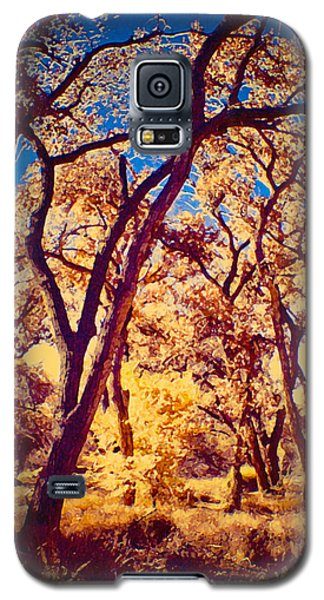 Cottonwoods Galaxy S5 Case
