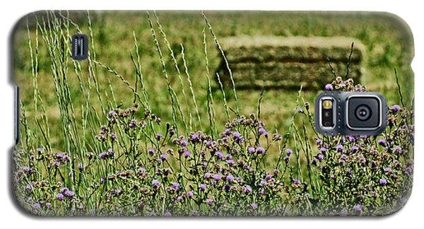 Country Gardens Galaxy S5 Case